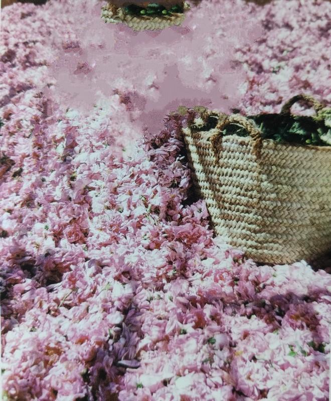 Marruecos de los Perfumes